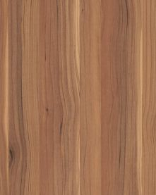 4449-60 Sapwood